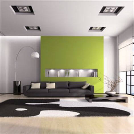 Black and White Living Room with Green Center Wall