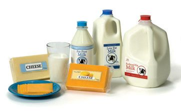 DairyGroup_498_Web