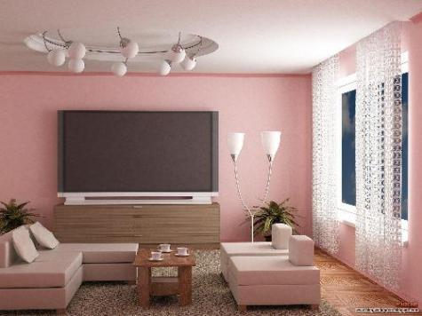 Pink Living Room Painting Idea