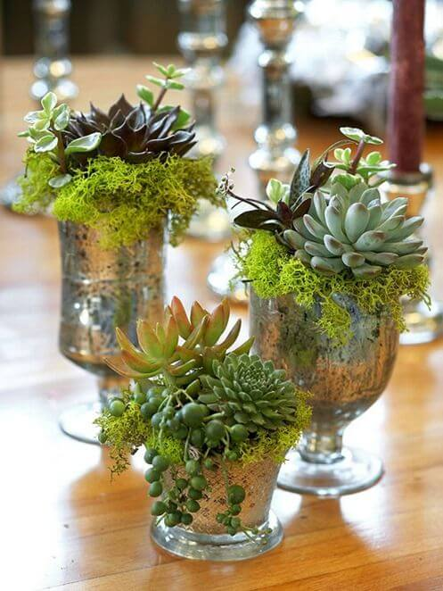 mercury-glass-succulents-bhg