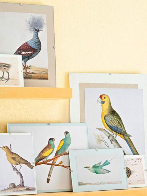 vintage-bird-prints-bhg