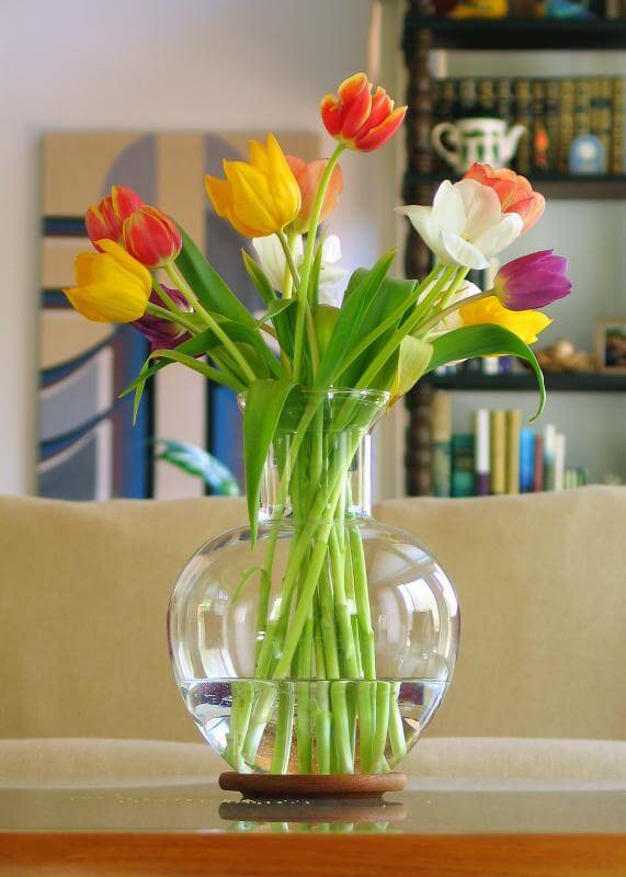 how to keep tulips from opening cut