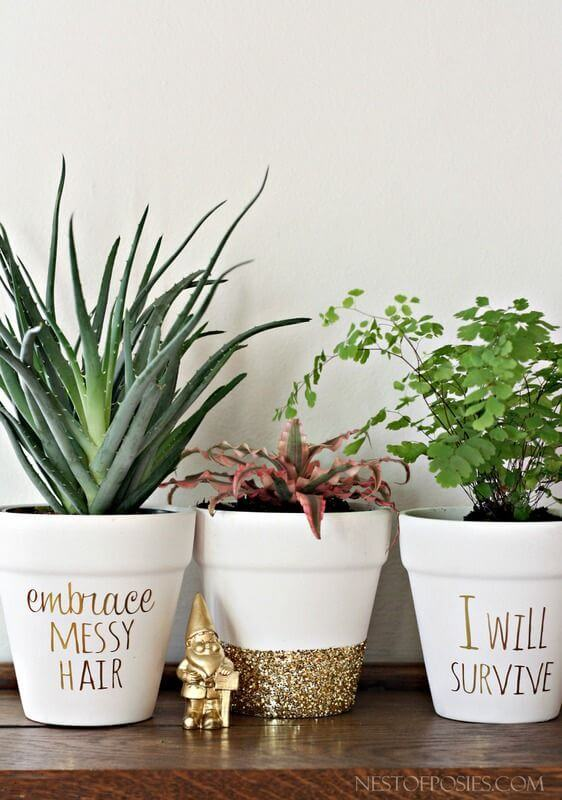 Gold Foil Lettering on succulents pots mod