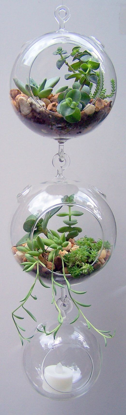 Terrarium Glass Hanging Double Hook mod